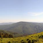 DSC_1438_panorama (2)